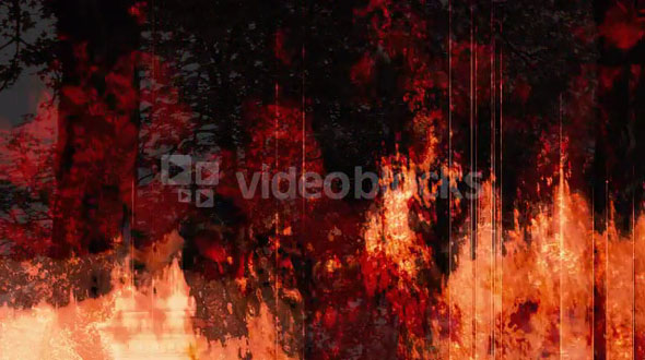 Rotting Fire 1