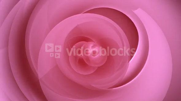 Rose Petal Spirals