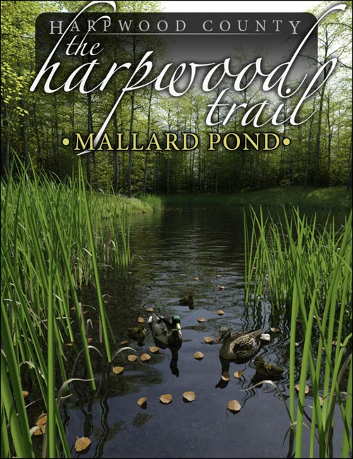The Harpwood Trail - Mallard Pond
