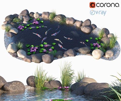 Water - Koi fish