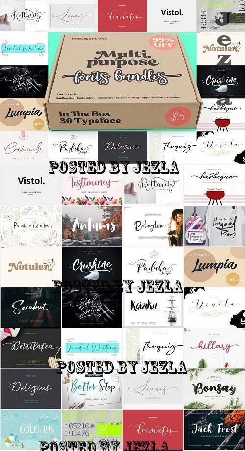 Multipurpose Font Bundle! - 30 Premium Fonts