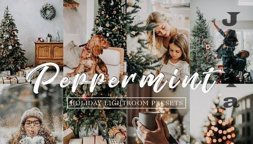 Moody Holiday Peppermint Lr Presets - 5620853