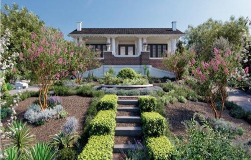 Globe Plants - Bundle 12 - Australian Home & Garden Plants