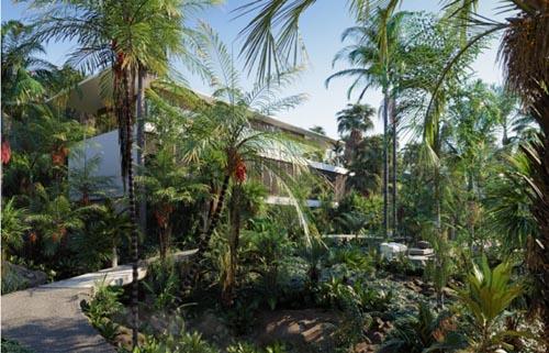 Globe Plants - Bundle 15 - Palm World