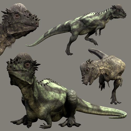 PachycephalosaurusDR