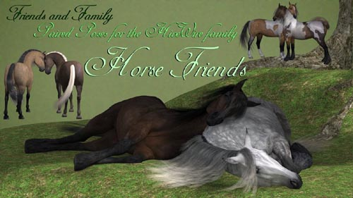 Friends and Family - Horse Friends