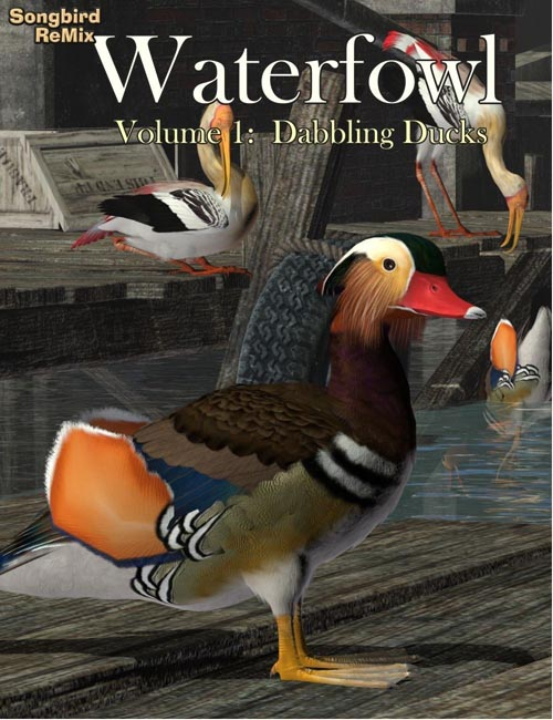 SBRM Waterfowl Vol 1 - Dabbling Ducks
