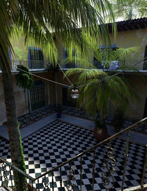 Tropical Palm Trees for Daz Studio