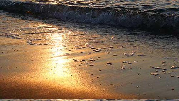 Golden surf sea