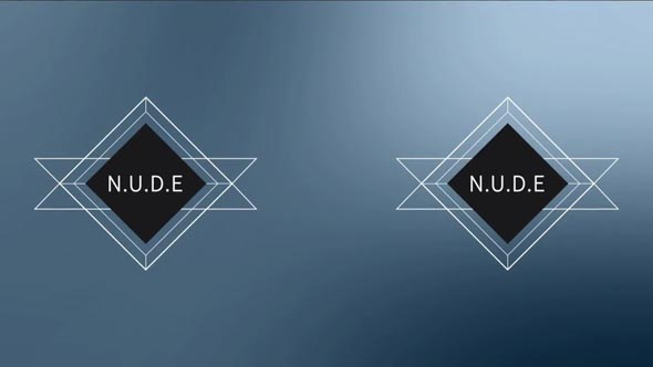 N.U.D.E Labels