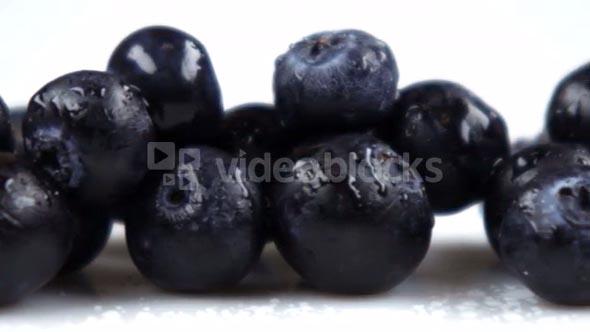 Closeup Slow Pan Across Blueberries