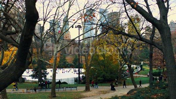 Moving Shot of Central Park Scene