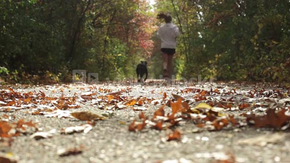 Girl and Dog Jogging Away Low Angle