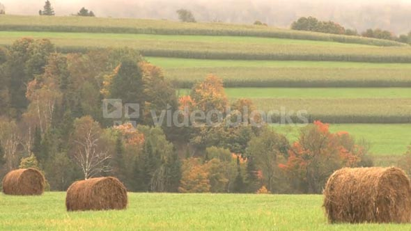 Light Rain On Hay Bails And Country Hillside