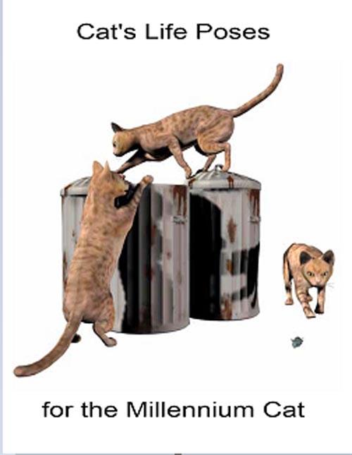 37 Cat's Life Poses