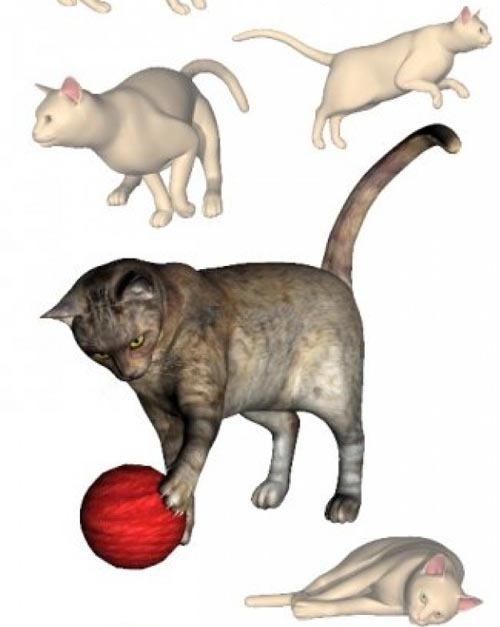Feline Discovery Poses [ .DUF UPDATE ]