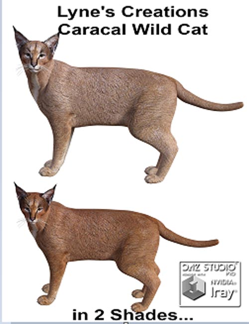 Lyne's Creations Caracal Wild Cat [ Poser, .DUF & Iray ]