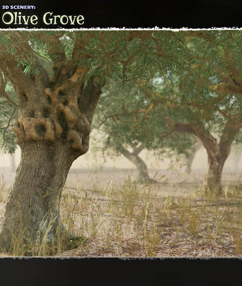 3D Scenery: Olive Grove