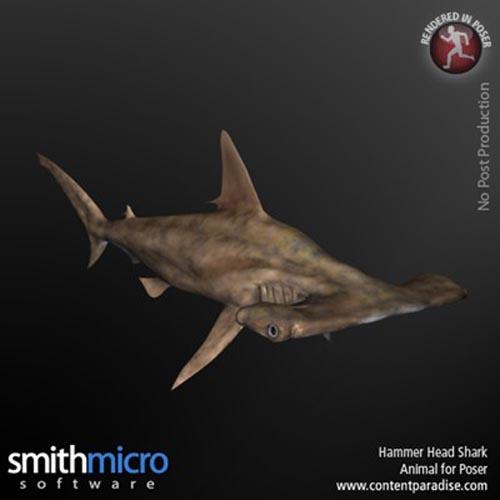 Hammerhead Shark [ .DUF & Iray UPDATE ]