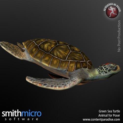 Green Sea Turtle [ .DUF & Iray UPDATE ]