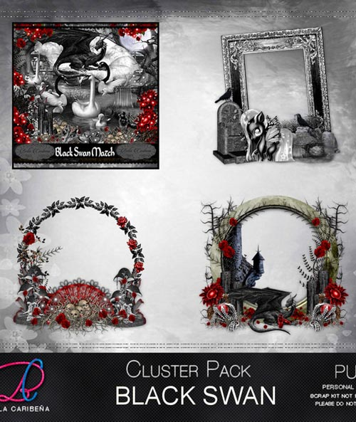 Black Swan Cluster Frames 5 (TS_PU)