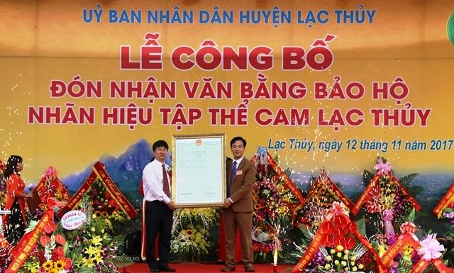 Cam Lạc Thủy nhận chứng nhận bảo hộ thương hiệu