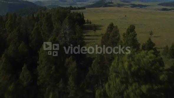 Flat Green Landscape