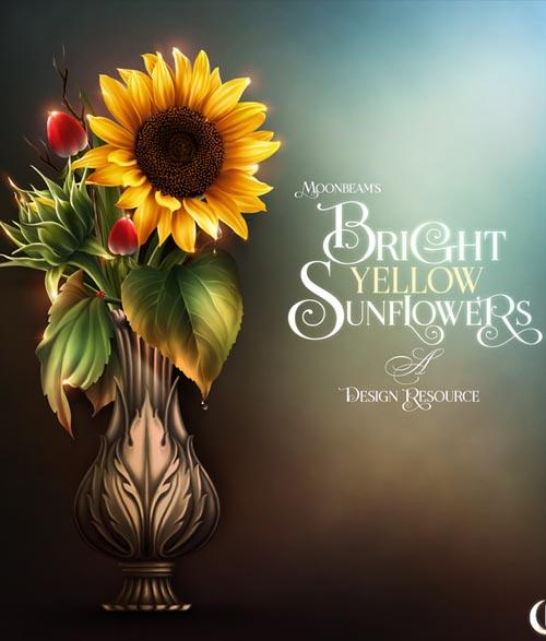 Moonbeam's Bright Yellow Sunflowers