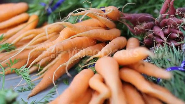 Beauty Shot Of Fresh Carrots