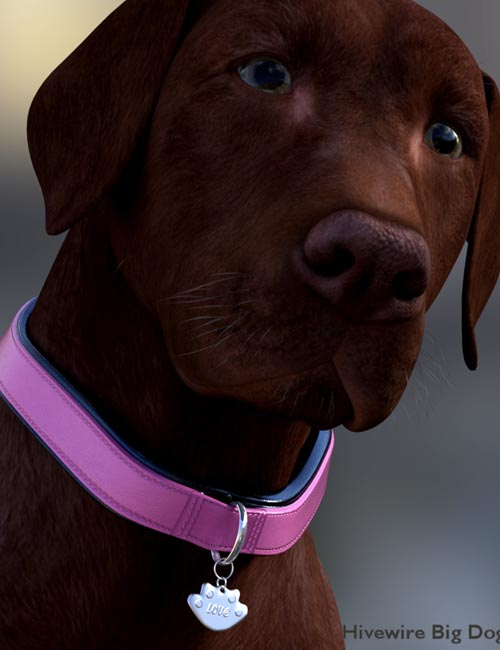 Collar Base for Hivewire Big Dog - Daz Studio Version