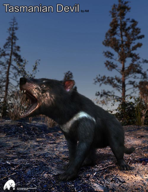Tasmanian Devil by AM