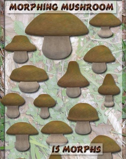 Morphing Mushroom