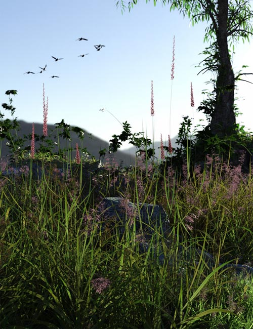 Long Grass - Essential Grassland Flowers and Plants