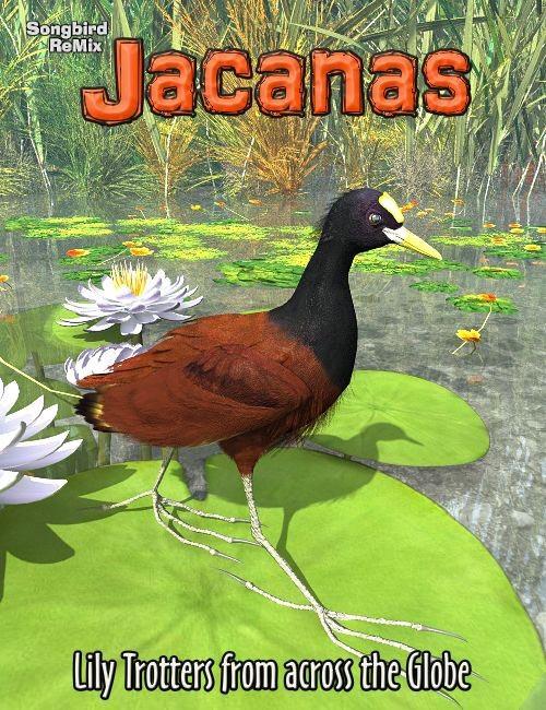 Songbird ReMix: Jacanas