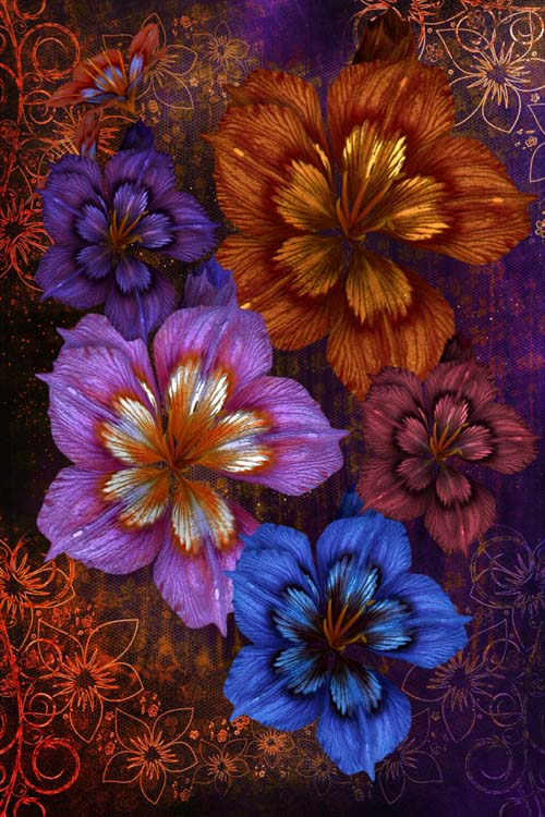 59 Floral Fall stock images in the PNG format