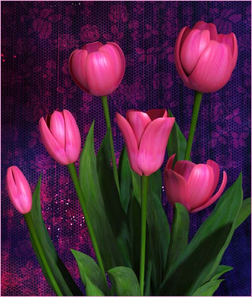 85 Valentine's Day floral images in the PNG format