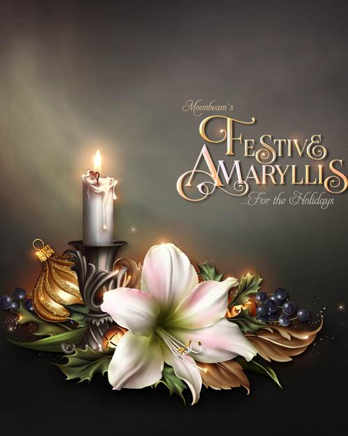 Moonbeam's Festive Amaryllis