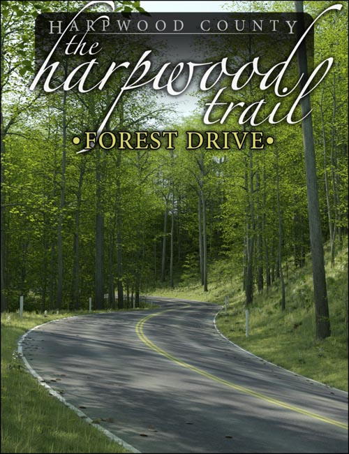 The Harpwood Trail - Forest Drive