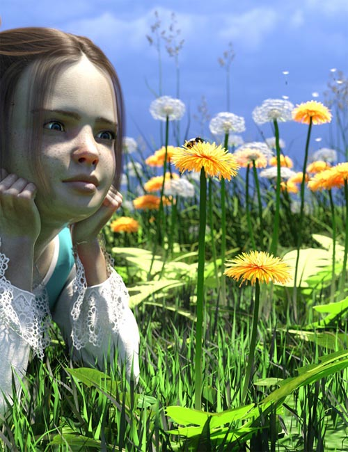 Dandelions - Grassland and Lawn Plants and Seeds
