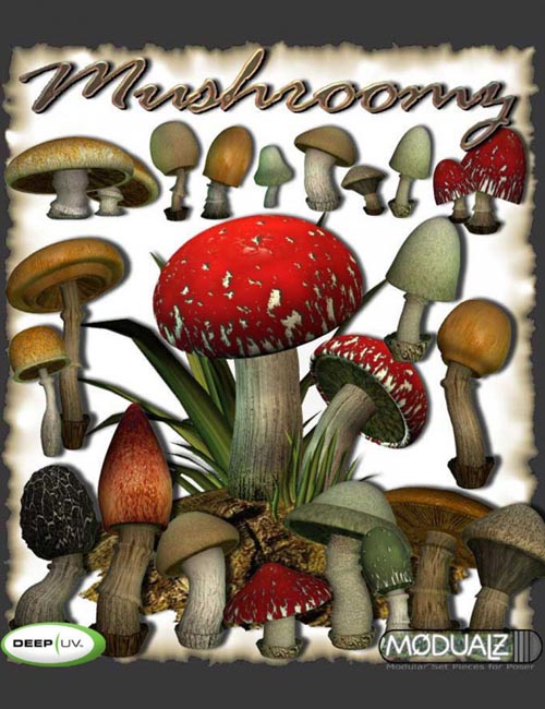 RDNA Mushroomz