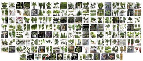 3DSky - Pro Models Plants Set