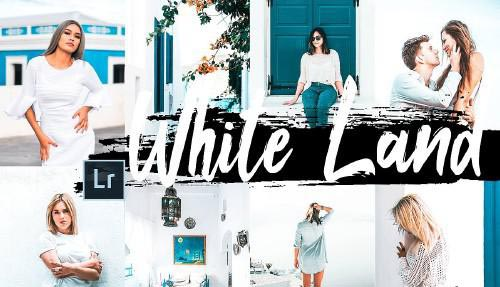 5 White Land Desktop Lightroom Presets and ACR preset - 346546