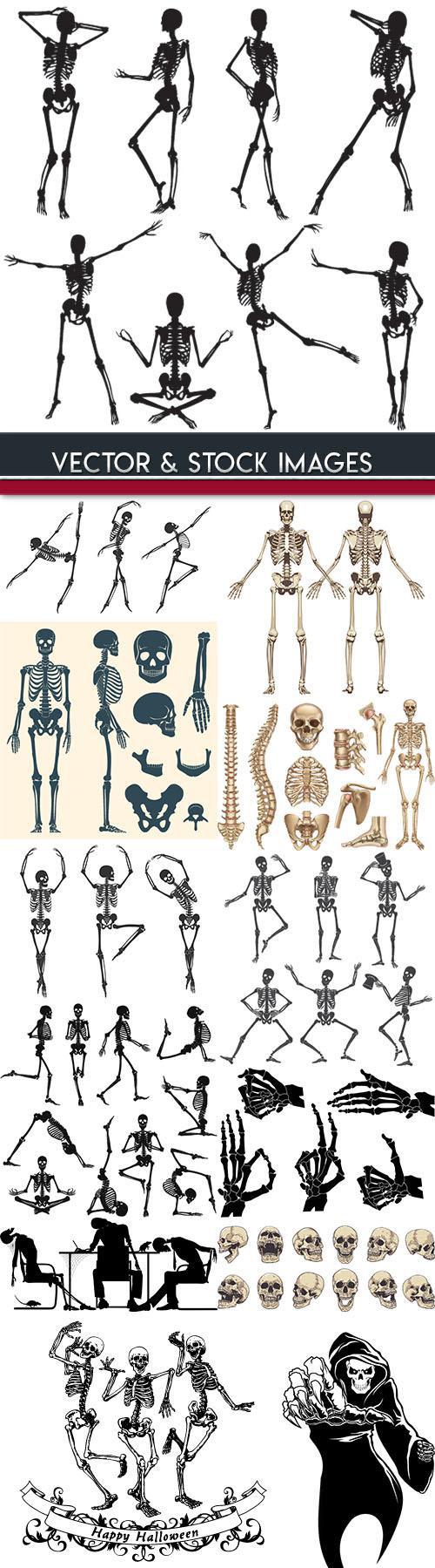 Human skeleton and bones in Halloween dance