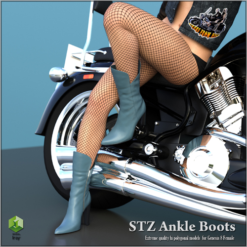 STZ Ankle boots