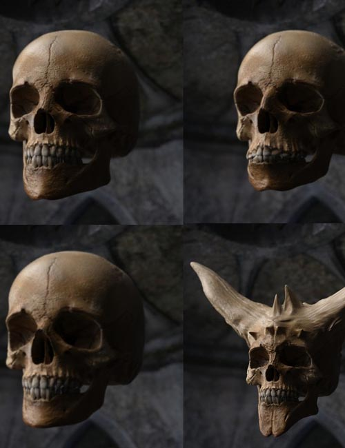 Skull Prop With Face Presets & Scars