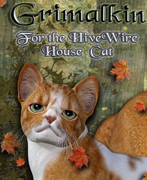 Grimalkin for the HiveWire House Cat