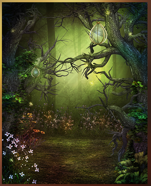 ABC's Woodland Dreams