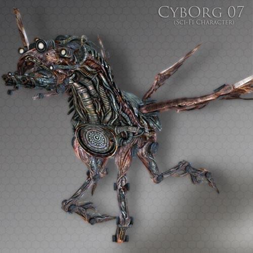 CybOrg 07