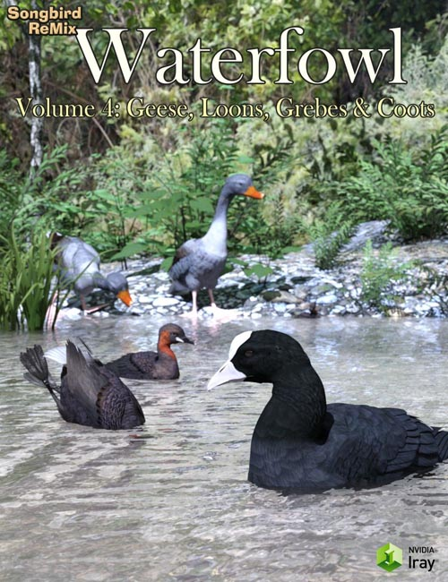 SBRM Waterfowl Vol 4 - Geese, Loons, Grebes & Coots