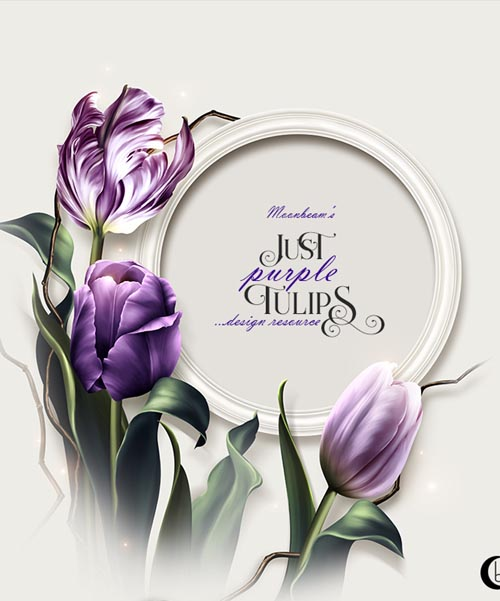 Moonbeam's Just Purple Tulips